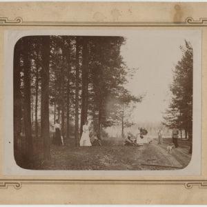 НВ. 11725  Фотография на паспарту. Прогулка в лесу. Фотобумага глянцевая, сепия.  к.  XIX – нач. ХХ века