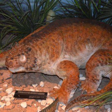 На средства президентского гранта в тотемском музее появится центр интерактивной палеонтологии