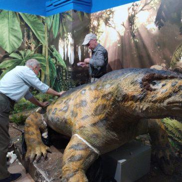 Самый крупный хищник пермского периода поселился в краеведческом музее